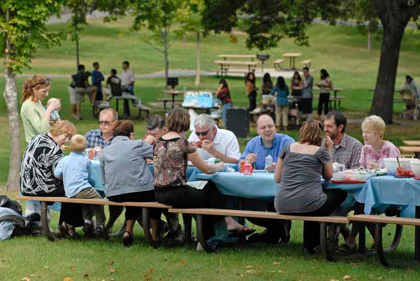 Large group picnic