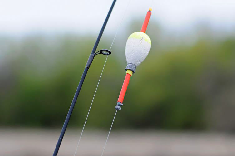 Fishing pole and bobber