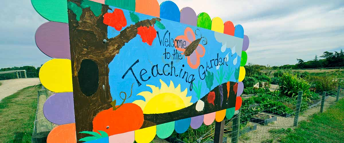 Colorful sign for the teaching garden