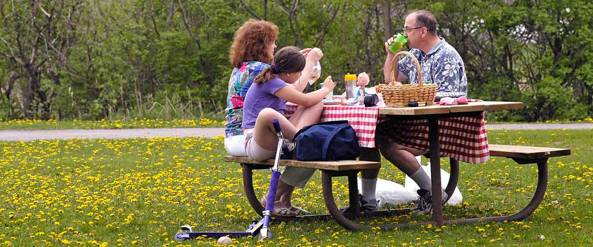 Family at a picnic table