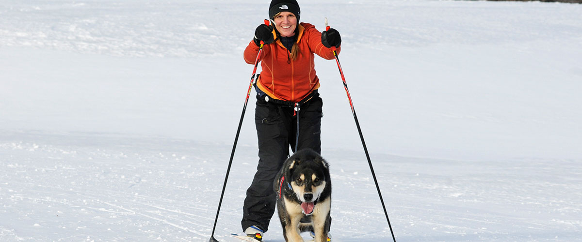 Women on skis with dog pulling